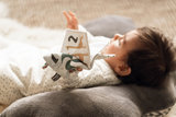 Baby booklet_