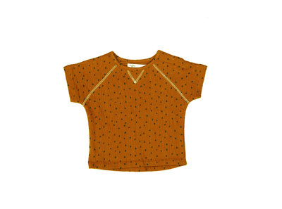 t-shirt short sleeve - colour: Toffee houses SS22