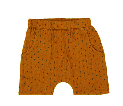 baggy short - colour: Toffee houses SS22
