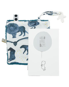 Giftcard hello little boy Storm Blue
